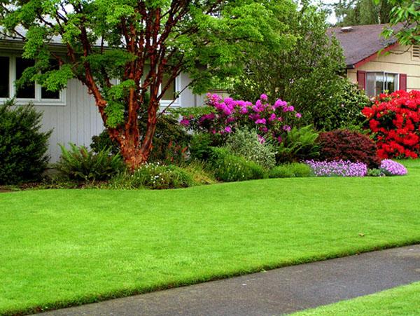 Сад в английском стиле: главное — газон