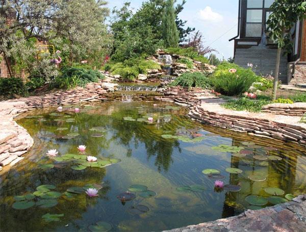 Обустройство водоема на приусадебном участке: плавающий аэратор-фонтан для пруда