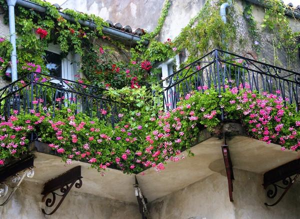 Как обустроить цветник на балконе?