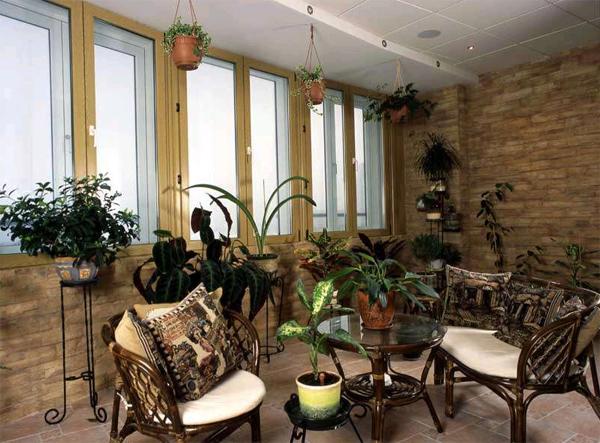 Зимний сад в квартире: лето круглый год