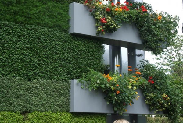 Вертикальное озеленение в ландшафтном и интерьерном дизайне