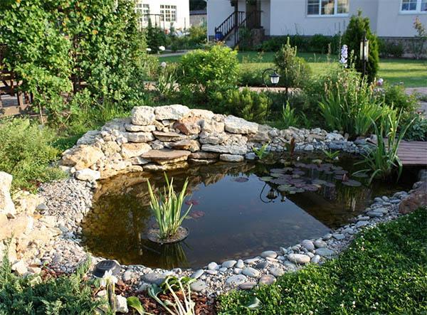 Как создать пруд в саду?