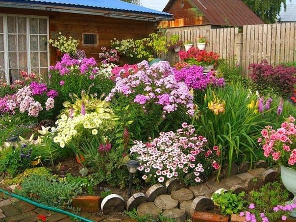 Разбивка цветника в саду: полезные советы
